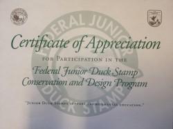 Duck Stamp Appreciation