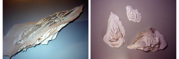 Paper Sculpture Oyster Lesson Plan