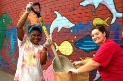 Arcadia Students Volunteer