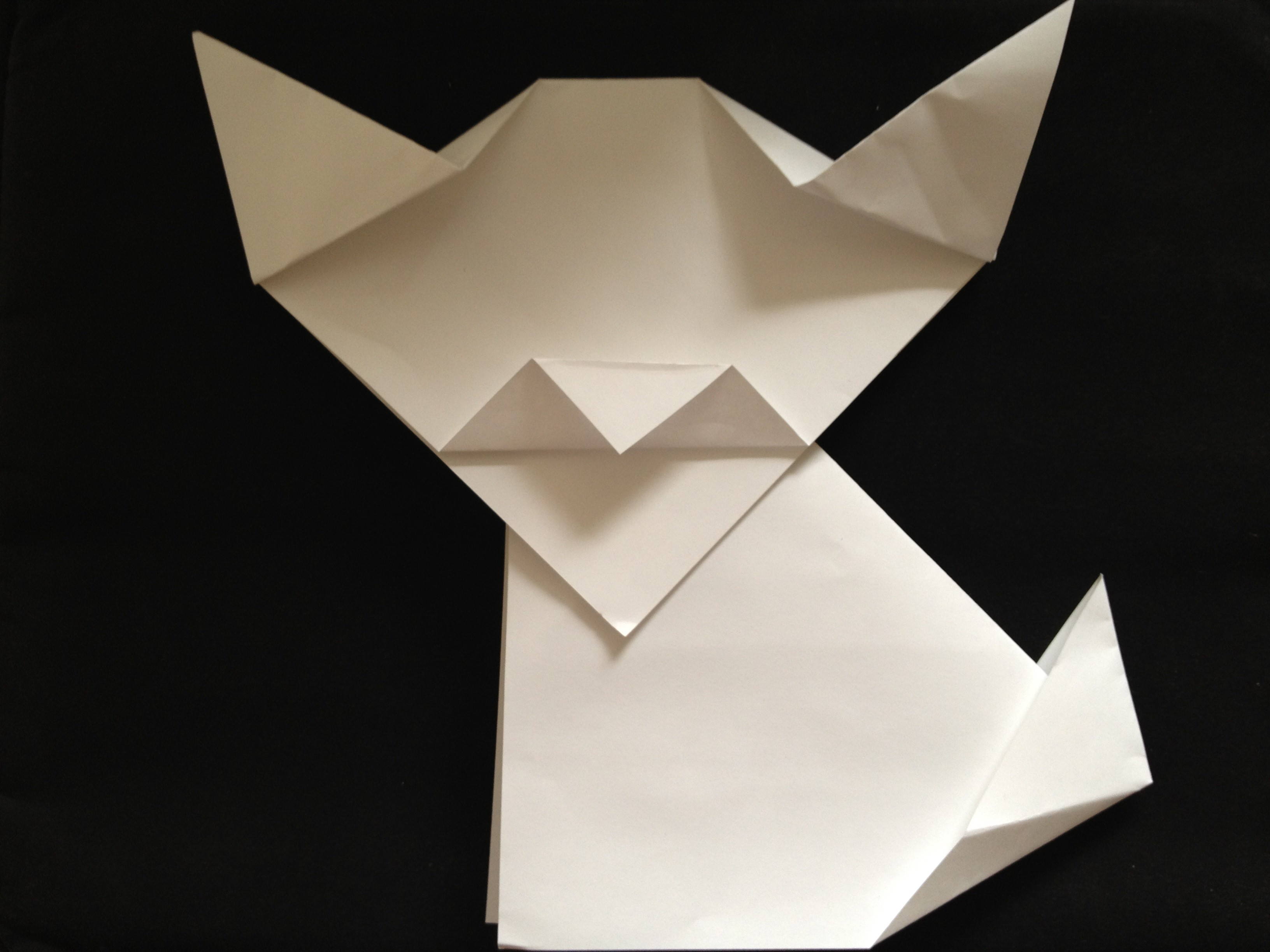 Directions to Fold an Origami Dog or Cat