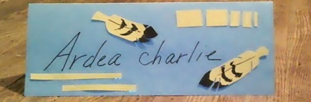 Scientific Name Tag