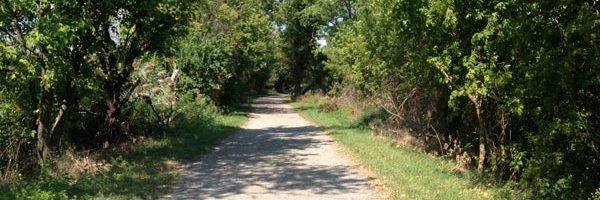 ASI Takes Women Veterans on a Hike