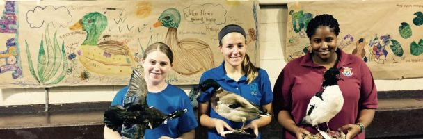 Conservation Through Art #DuckStampPHL