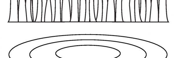 Pond Template Handout