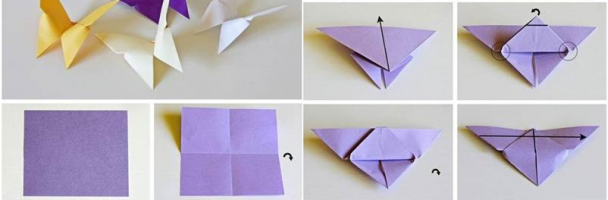Origami Butterflies Lesson Plan – Nicha