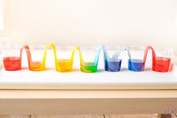 Rainbow Walking Water Experiment