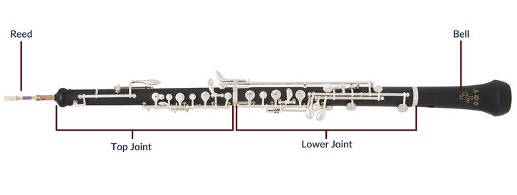 Highs and Lows with the Oboe