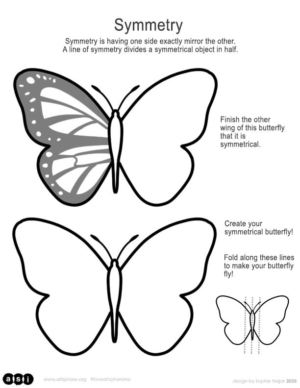 Butterfly Symmetry Handout