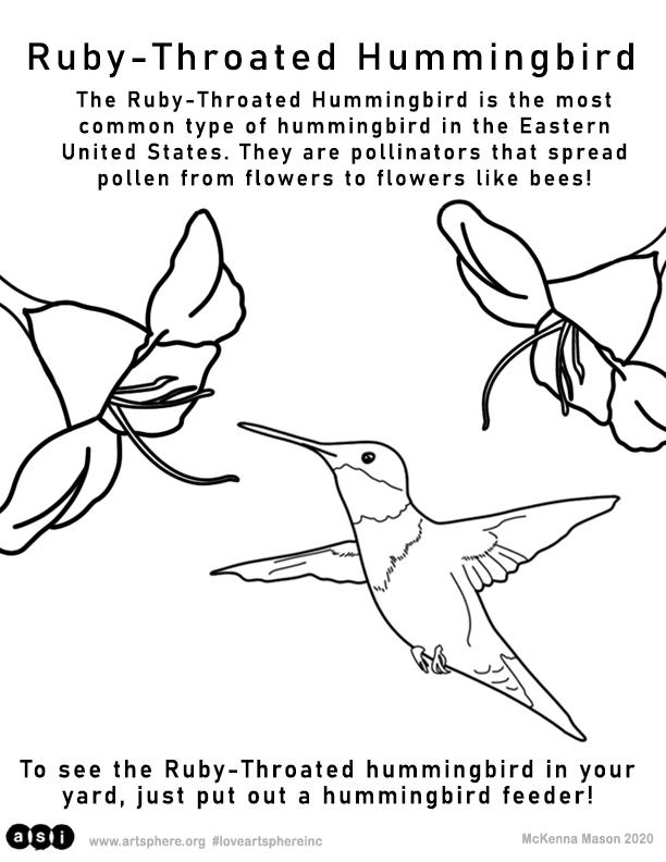 Ruby-Throated Hummingbird Handouts