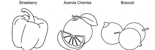 Plant Based Vitamin C Sources Coloring Handout