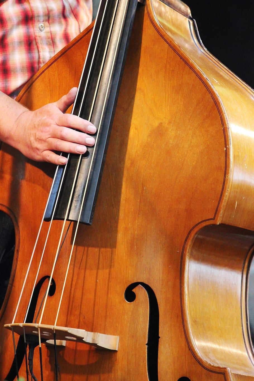 musician-instrument-double-bass-band